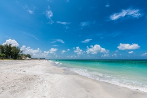 Blue Turtle Cottage Beach Anna Maria Island